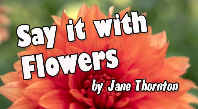 Reviews for Say It With Flowers